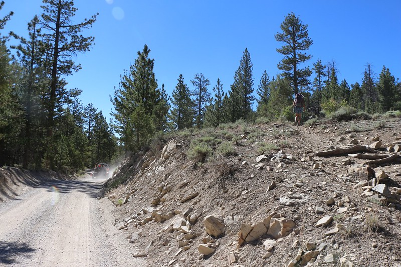 We cross Van Dusen Canyon Road (3N09) and continue hiking uphill on the PCT at mile 275