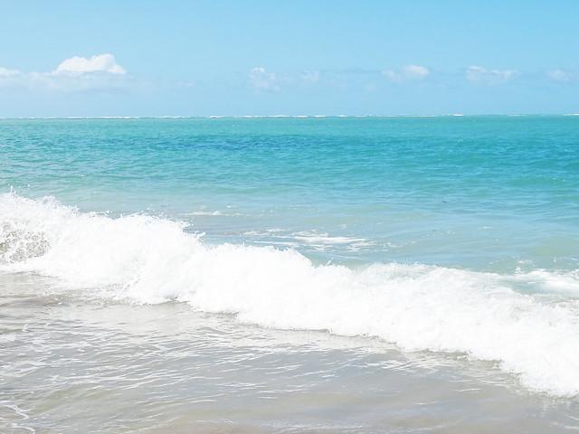 Praia do Patacho, AL | Julho 2016