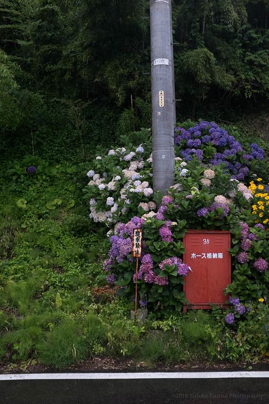 2016-07-12_13 Nagano 長野