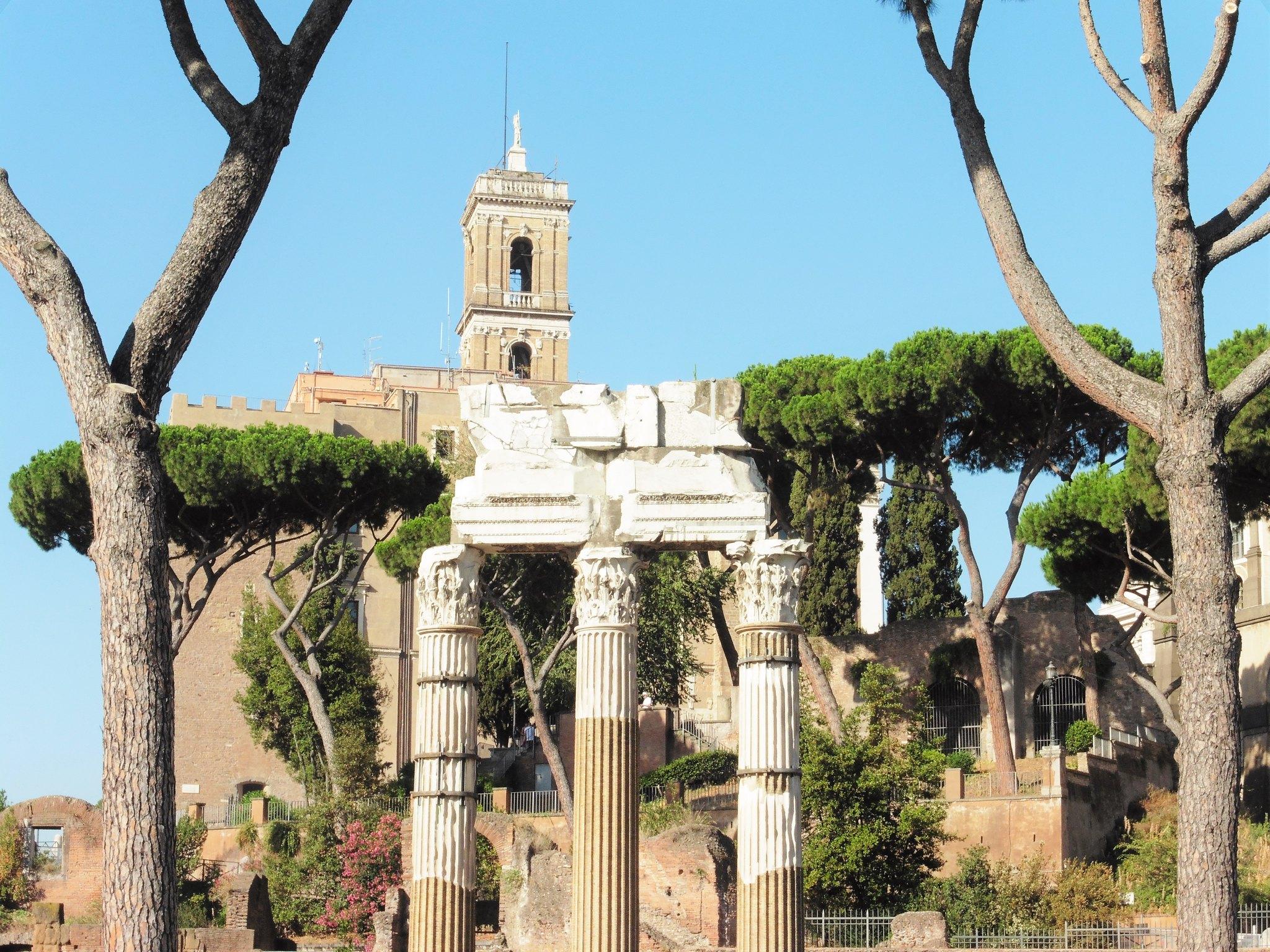 Columns in Roman Forum