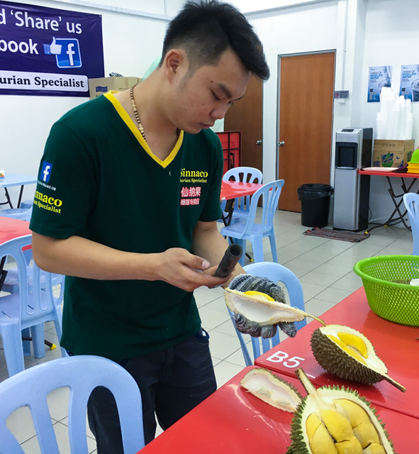 sinnaco-durian-expert